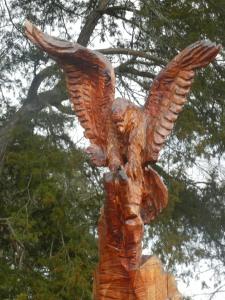 48 Days Eagle