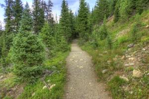 colorado-rocky-mountains-national-park-path-on-the-mountain_800