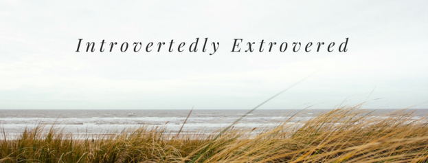 The Introverted Extrovert – What is that? | 4 Stream Living